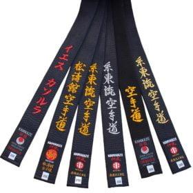 Ceintures Noires de Karate