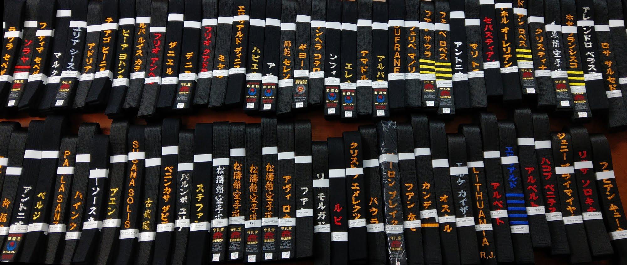 Ceinture Noire de Karate SHUREIDO Coton ou Soie-Satin qualité ... 9d602a1feec