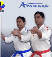 kimono-karate-gi-arawaza-amber-evolution-permiere-league-bleu-rouge