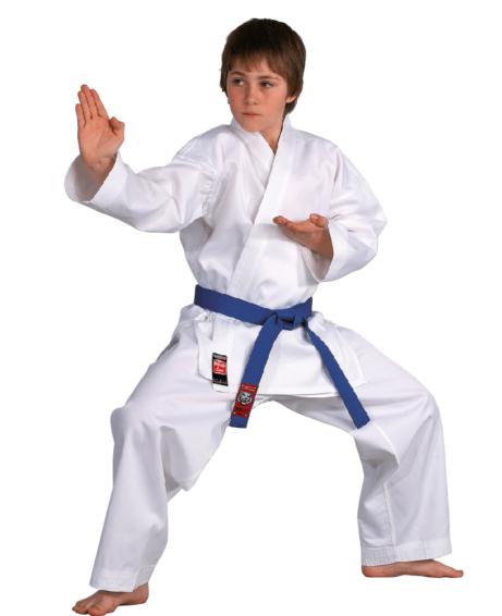 kimono-karate-gi-dojo-line-danrho-blanc