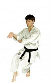kimono-karate-gi-hirota-#163-kata-sur-mesure-neko-ashi-dashi