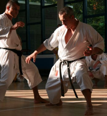 kimono-karate-gi-kamikaze-europa-esquive