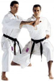 kimono-karate-gi-kamikaze-monarch-fudo-dachi-tate-shuto
