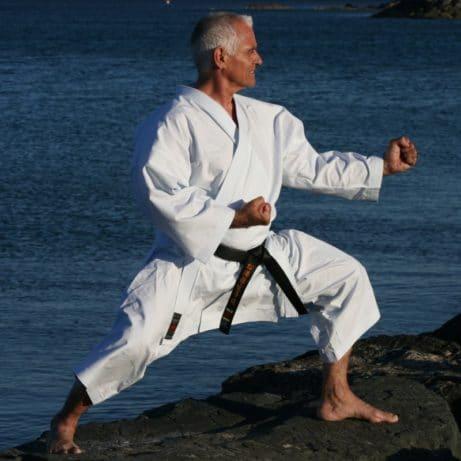 kimono-karate-gi-shureido-mugen-instructor-sensei-lavorato-fudo-dachi-kamae