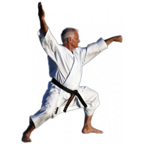 kimono-karate-gi-shureido-mugen-instructor-sensei-lavorato-maete-zuki