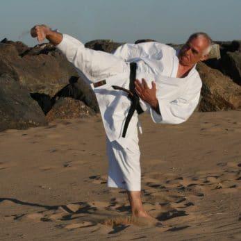 kimono-karate-gi-shureido-mugen-instructor-sensei-lavorato-yoko-geri